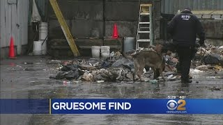 More Body Parts Found In Bronx Transfer Station