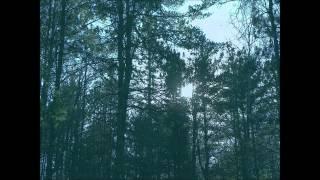 Ashbringer - Vacant (Full Album)