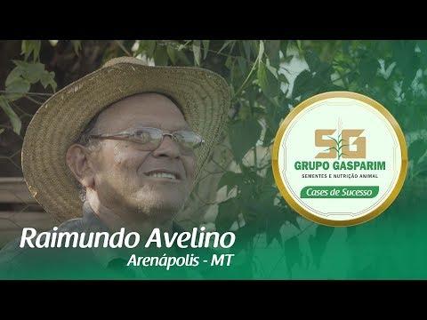 RAIMUNDO AVELINO - GASPARIM NUTRIÇÃO ANIMAL