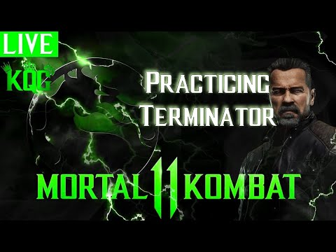Terminator T-800 stream w/ MIC 🎤 advanced  combos | MK11
