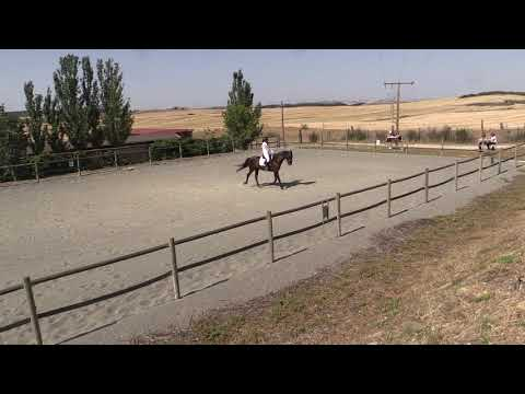 Doma Tafalla 290619 Video 2