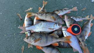Зимняя рыбалка на озере татыш