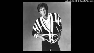 Barry Manilow - I'm Your Man (Club Mix)