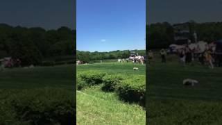 Jockey Down at Nashville steeple chase