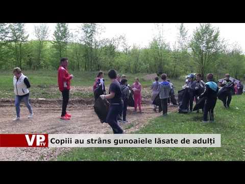 Copiii au strâns gunoaiele lăsate de adulți