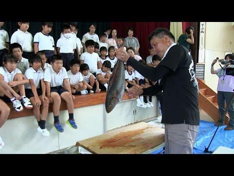 種子島の学校活動:住吉小学校出前授業イカとカンパチの講義・模擬釣り体験・アカバラのさばき方