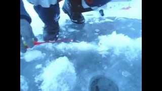 Зимняя рыбалка на сорочинском водохранилище