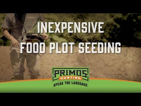 Inexpensive Ways to Seed Your Food Plots video thumbnail