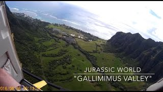 Helicopter Tour Oahu, Hawaii | Paradise Helicopters Valleys & Waterfall Explorer Tour NO DOORS!!