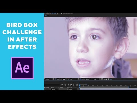 Bird Box Challenge in Adobe After Effects | How to Create the Bird Box Eye Effect