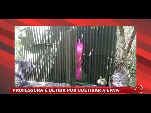 Professora é detida suspeita de cultivar estufa de Maconha em Aiuruoca