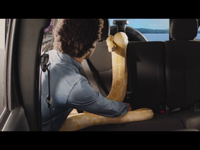 Click It or Ticket video
