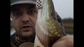 Рыбалка в гатчинский район места