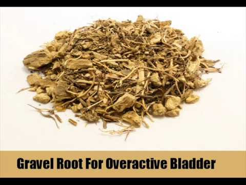 Video 9 Herbal Remedies For Overactive Bladder