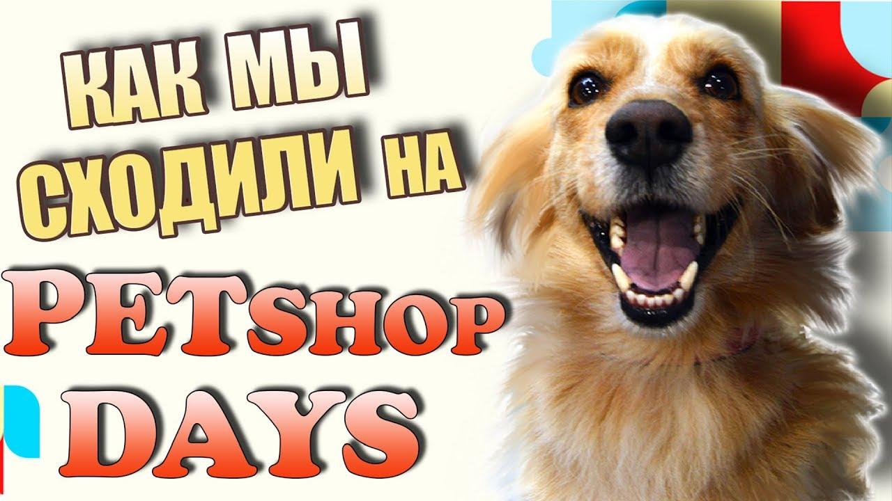 Фестиваль животных Petshop Days в Санкт-Петербурге