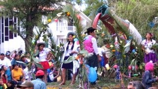 preview picture of video 'Carnaval de Tarija 2005 - タリハのいろいろ混ざったカーニバル'