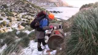 Macquarie Island Pest Eradication Project - documentary trailer
