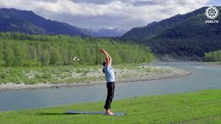 Йога для начинающих  Видео уроки  Сурья Намаскар   комплекс асан приветствия сол