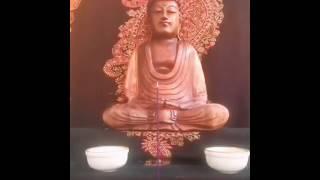 Nuovo video promozionale Tempio Zen Gyosho 2020