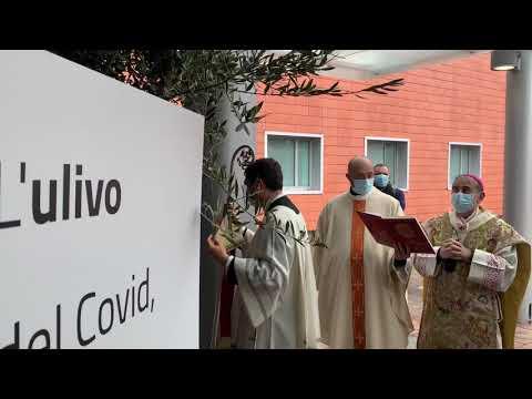 """Benedetto dall'arcivescovo di Milano """"l'ulivo del Covid"""" all'ospedale di Varese"""