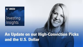 Investing Insights: An Update on our High-Conviction Picks and the U.S. Dollar