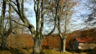 preview picture of video 'Basque Country-Iturriotz en Otoño-Mikel Laboa'