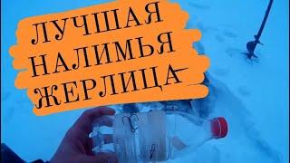 Как ставить жерлицы зимой на налима