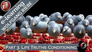 Wolfgang Riebe: Truths that can change your life, Part 3...