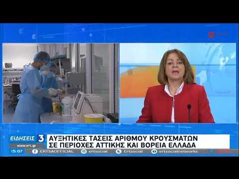 Κορονοϊός   Υψηλό ακόμα το επιδημιολογικό φορτίο   02/01/2021   ΕΡΤ