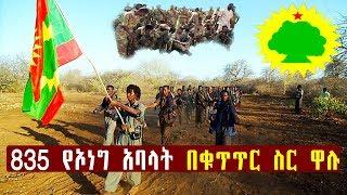 Ethiopia - ኮማንድ ፖስት 835 የኦነግ አባላት በቁጥጥር ስር አዋለ