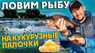 Кукурузные палочки как наживка для рыбы