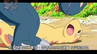 【魔女嘉尔】谁说肉食类恐龙不能和草食类恐龙。。。《你看起来好像很好吃》
