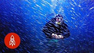 Oceanic Trouble? Summon These Aquanauts! | That