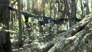 The Artichokes - Motion Pictures