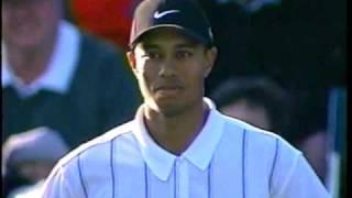 Tiger Woods 17th Hole @ TPC 2001