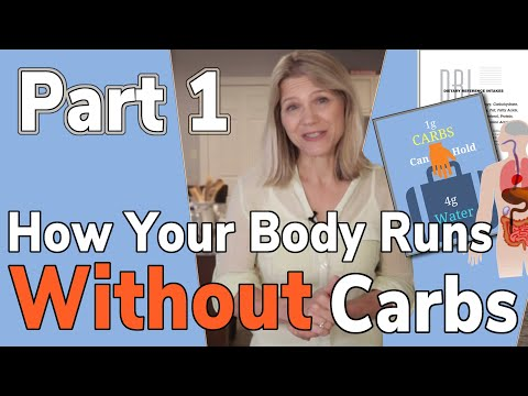How Your Body Runs without Carbs: Part 1 of 2