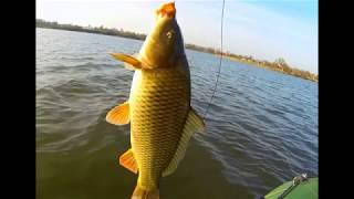 Рыбалка в саратове свежие