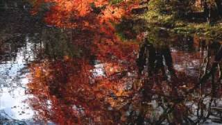 Stephane Grappelli & Yehudi Menuhin - Autumn Leaves