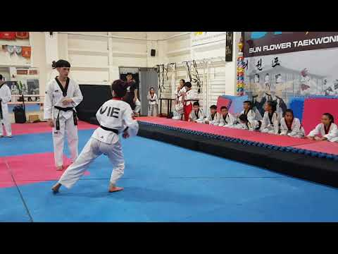 Jump Back Whip Kick - Step 3 (1)