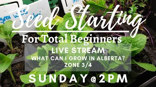 Seed Starting For Total Beginners | What can I grow in Alberta (Zone 3/4)