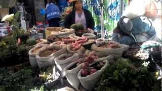preview picture of video 'mercado tarija'