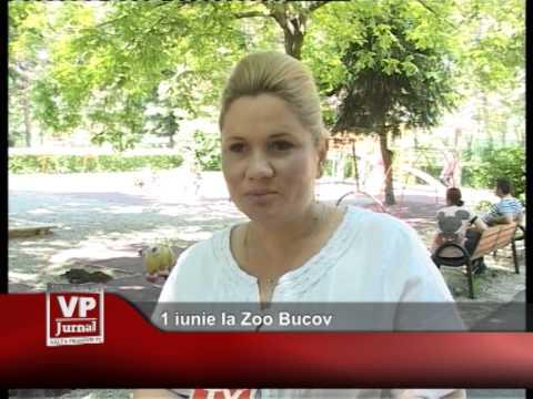 1 iunie la Zoo Bucov
