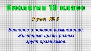 Биология 10 класс Урок 9