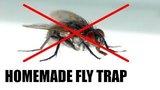 Make a Homemade Fly Trap