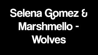 Selena Gomez & Marshmello - Wolves Lyrics