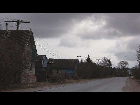 Жители деревни Коростынь написали письмо Владимиру Путину