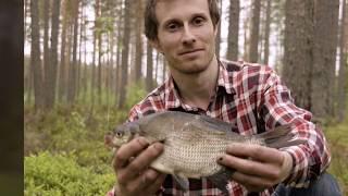 Река широкая рощино рыбалка