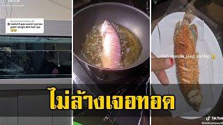 เมียฉุน ผัวไม่ล้างตู้ปลา จนน้ำสกปรก สุดท้ายคว้าไม้ตาย จับมาทอดซะเลย