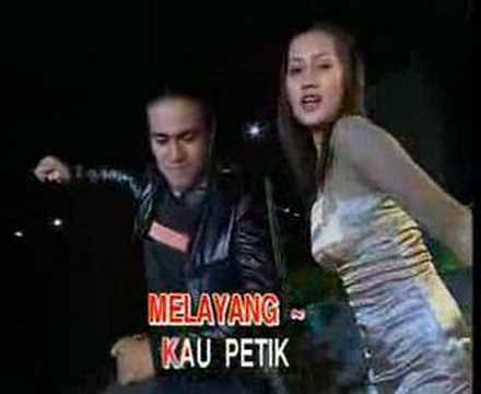 Download Lagu Mp3 Download Mp3 Dangdut Bunga Dan Kumbang
