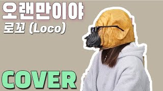 Gambar cover 불독이 부르는 [로꼬 - 오랜만이야(Feat. 자이언티)]커버 / Bulldog Singing [Loco - It's been a while(Feat. Zion.T)] COVER